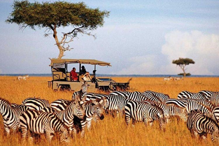 tourisme et developpement economique